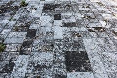 Υπόβαθρο του πατώματος πετρών Στοκ Φωτογραφία