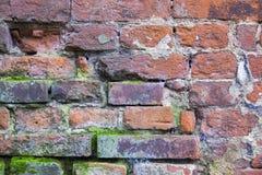 Υπόβαθρο του τοίχου Στοκ εικόνα με δικαίωμα ελεύθερης χρήσης