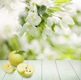 Υπόβαθρο τροφίμων με τα φρούτα της Apple στο λευκό ξύλινο πίνακα Στοκ Φωτογραφίες