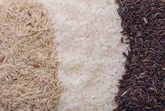 Υπόβαθρο τροφίμων με τρεις σειρές των ποικιλιών ρυζιού στοκ φωτογραφία