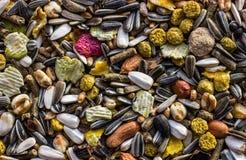 Υπόβαθρο τροφίμων τρωκτικών Στοκ Φωτογραφίες