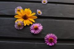 Υπόβαθρο των λουλουδιών στον πίνακα flowers multicolored στοκ φωτογραφίες με δικαίωμα ελεύθερης χρήσης