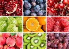 Υπόβαθρο των φρέσκων μικτών φρούτων στοκ εικόνες