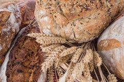 Υπόβαθρο των φρέσκων ψωμιών δημητριακών Στοκ φωτογραφία με δικαίωμα ελεύθερης χρήσης