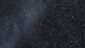 Υπόβαθρο των φυσικών επιπλεόντων μορίων σκόνης απόθεμα βίντεο