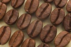 Υπόβαθρο φασολιών καφέ, κινηματογράφηση σε πρώτο πλάνο Στοκ Εικόνες
