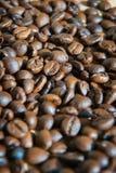 Υπόβαθρο φασολιών καφέ πολυτέλειας Στοκ φωτογραφίες με δικαίωμα ελεύθερης χρήσης