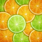 Υπόβαθρο φετών φρούτων πορτοκαλιών και ασβέστη Στοκ Εικόνες