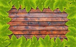 Υπόβαθρο φθινοπώρου με τα πράσινα φύλλα στον ξύλινο πίνακα Στοκ φωτογραφίες με δικαίωμα ελεύθερης χρήσης