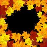 Υπόβαθρο φθινοπώρου με τα φύλλα σφενδάμνων Διανυσματική απεικόνιση