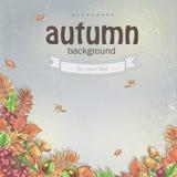 Υπόβαθρο φθινοπώρου με τα φύλλα σφενδάμου, τη βαλανιδιά, το κάστανο, τα μούρα σορβιών και τα βελανίδια Στοκ Φωτογραφία