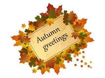 Υπόβαθρο φθινοπώρου, φύλλα φθινοπώρου γύρω από το πλαίσιο με τους χαιρετισμούς φθινοπώρου επιγραφής, άσπρο υπόβαθρο Διανυσματική απεικόνιση