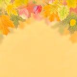 Υπόβαθρο 014 φθινοπώρου Στοκ Εικόνες