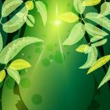 Υπόβαθρο φθινοπώρου διανυσματική απεικόνιση