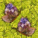 Υπόβαθρο φιαγμένο από πεταλούδες των διάφορων λουλουδιών Στοκ Εικόνες