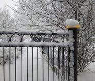 Υπόβαθρο φρακτών χειμερινών πάρκων Στοκ Φωτογραφία