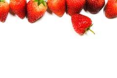 Υπόβαθρο φραουλών με απομονωμένος Στοκ Φωτογραφία