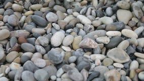 Υπόβαθρο φύσης από τα γκρίζα χαλίκια θάλασσας φιλμ μικρού μήκους