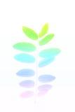 Υπόβαθρο φύλλων χρώματος που γίνεται με το φίλτρο χρώματος στοκ εικόνα με δικαίωμα ελεύθερης χρήσης