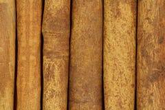 Υπόβαθρο φλοιών κανέλας ραβδιών στοκ εικόνες με δικαίωμα ελεύθερης χρήσης