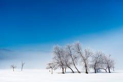 Υπόβαθρο χειμερινών ελαφρύ τοπίων Στοκ Εικόνες