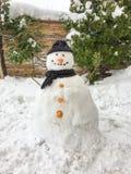 Υπόβαθρο χιονανθρώπων Στοκ φωτογραφίες με δικαίωμα ελεύθερης χρήσης