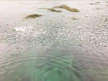 Υπόβαθρο χιονιού, παγωμένο υπόβαθρο Στοκ Εικόνα