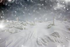 Υπόβαθρο Χριστουγέννων με τα αστέρια και τα χιονώδη δέντρα έλατου Στοκ Εικόνα