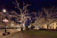 Υπόβαθρο Χριστουγέννων με τα καμμένος δέντρα Στοκ Εικόνες