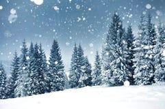 Υπόβαθρο Χριστουγέννων με τα χιονώδη δέντρα έλατου Στοκ Φωτογραφία
