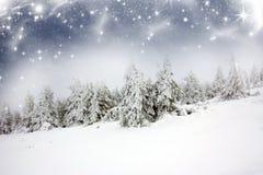 Υπόβαθρο Χριστουγέννων με τα χιονώδη δέντρα έλατου Στοκ Εικόνες