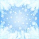 Υπόβαθρο Χριστουγέννων με τους κομψούς κλάδους στον παγετό Στοκ φωτογραφίες με δικαίωμα ελεύθερης χρήσης