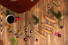 Υπόβαθρο Χριστουγέννων με τους κλάδους και τους κώνους έλατου Στοκ εικόνα με δικαίωμα ελεύθερης χρήσης