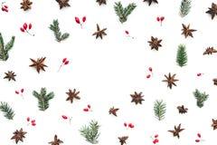Υπόβαθρο Χριστουγέννων με το γλυκάνισο και τα κόκκινα μούρα στοκ φωτογραφία