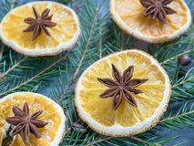 Υπόβαθρο Χριστουγέννων με το εσπεριδοειδές των πορτοκαλιών φετών και του γλυκάνισου αστεριών στους κομψούς κλάδους Στοκ φωτογραφίες με δικαίωμα ελεύθερης χρήσης