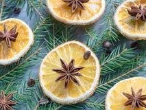 Υπόβαθρο Χριστουγέννων με το εσπεριδοειδές των πορτοκαλιών φετών και του γλυκάνισου αστεριών στους κομψούς κλάδους Στοκ Φωτογραφία