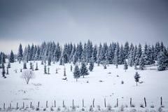 υπόβαθρο Χριστουγέννων του χιονώδους χειμερινού τοπίου Στοκ Εικόνες