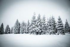 υπόβαθρο Χριστουγέννων του χιονώδους χειμερινού τοπίου Στοκ φωτογραφία με δικαίωμα ελεύθερης χρήσης