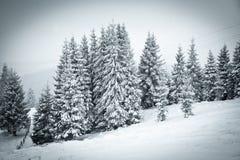 υπόβαθρο Χριστουγέννων του χιονώδους χειμερινού τοπίου Στοκ Φωτογραφία