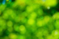 Υπόβαθρο Στοκ φωτογραφία με δικαίωμα ελεύθερης χρήσης
