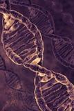 Υπόβαθρο DNA Στοκ Φωτογραφία