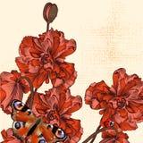 Υπόβαθρο Grunge με συρμένες τα χέρι λουλούδια και την πεταλούδα παπαρουνών Στοκ φωτογραφία με δικαίωμα ελεύθερης χρήσης