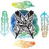 Υπόβαθρο onwatercolor φτερών Στοκ Φωτογραφίες