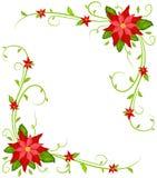 Υπόβαθρο Poinsettia Στοκ Εικόνες