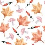 Υπόβαθρο Watercolor με τα φύλλα σφενδάμου, μανιτάρια, κόκκινα λουλούδια ελεύθερη απεικόνιση δικαιώματος
