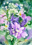 Υπόβαθρο wildflowers Watercolor Στοκ εικόνα με δικαίωμα ελεύθερης χρήσης
