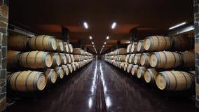 Υπόγειος θάλαμος κελαριών κρασιού απόθεμα βίντεο