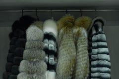 Υπόλοιπος κόσμος των γκρίζων παλτών γουνών στο ράφι, ντύνοντας κατάστημα Στοκ Φωτογραφίες
