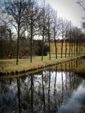 Υπόλοιπος κόσμος των δέντρων παράλληλα με ένα μικρό κανάλι στοκ φωτογραφίες