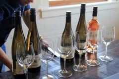 Υπόλοιπος κόσμος των μπουκαλιών και των γυαλιών κρασιού, έτοιμος για τη δοκιμή, οινοποιία ρίζας διαβίωσης, Ρότσεστερ, Νέα Υόρκη,  στοκ εικόνες με δικαίωμα ελεύθερης χρήσης